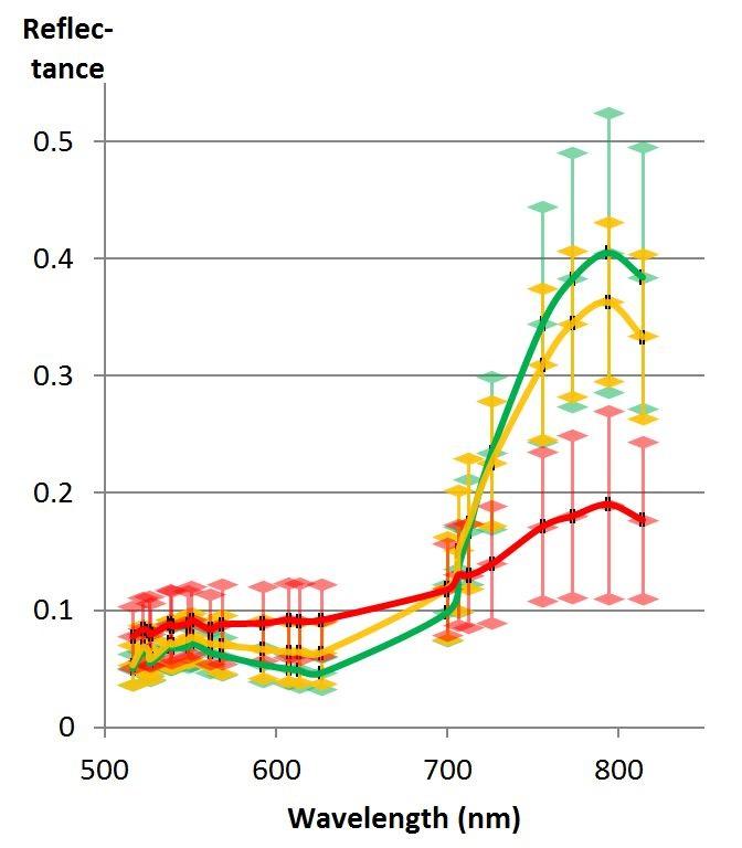 Puun heijastusspektristä voidaan havaita sen terveydentilaa. Kuvan spektrivasteista vihreä on terveille, keltainen sairastuneille ja punainen kuolleille kuusille. Spektrimittaukset on tehty hyperspektri UAV:n kuvilta.